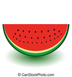a piece of watermelon in color vector illustration