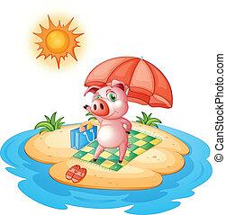 A pig at the beach