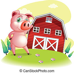 A pig at the farm pointing the barnhouse