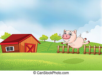 A pig jumping at the farm