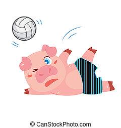 a pig's beach activities