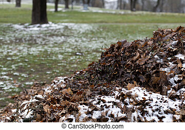 A pile of fallen faded dry autumn leaves under snow - A heap...