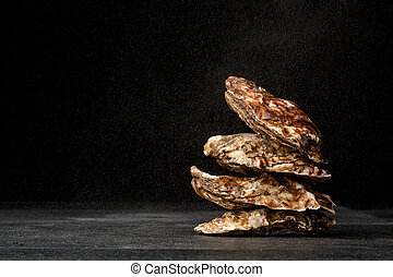 A pile of four tasty fresh oysters on a black background. Delicious tropical sea mollusk. The greatest delicacy. Copy space.