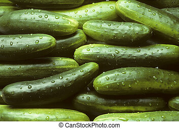 A pile of fresh cucumbers lying horizontally with drops of...