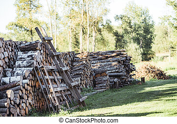 A Pile of Logs in the Backyard on the Sunny Summer Evening - Vintage Film Look