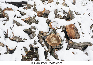 A pile of oak wood for the snow-covered stove.