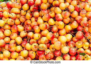 A pile of rainier cherries.