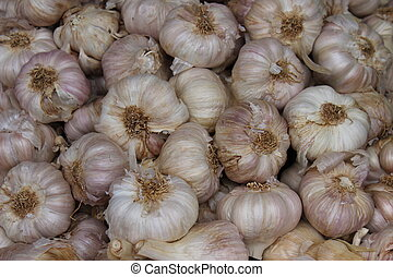 a pile of unpeeled garlic at the market