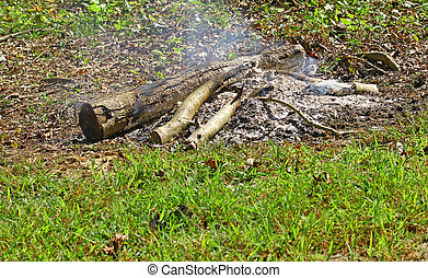 A pile of wood logs burning down to ashes in the grass field on a summer day