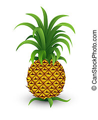pineapple - A pineapple isolated on a white background
