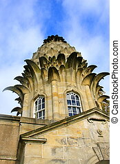A Pineapple Roof