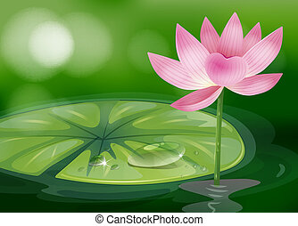 A pink flower at the pond