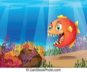 A piranha in the sea with corals