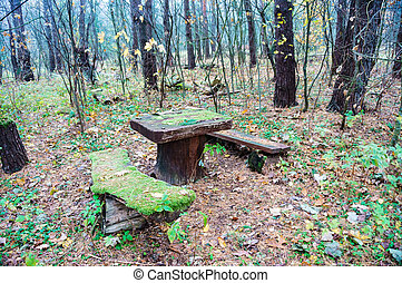 a place to rest in the forest, a table and benches for travelers