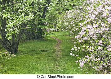 A Place to Sit at Asticou Azalea Garden