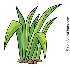 Illustration of a plant on a white background