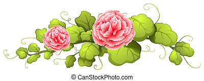 A plant with carnation pink flowers - Illustration of a...