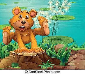 A playful bear above the stump