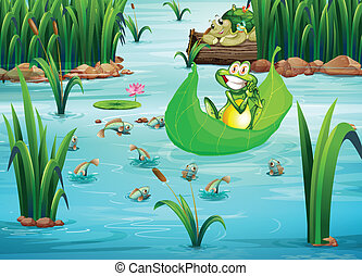 A playful frog and a turtle at the pond