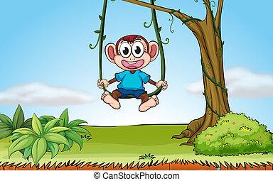 A playing monkey