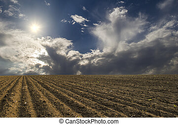 plowed field - A plowed field on a background of blue sky ...