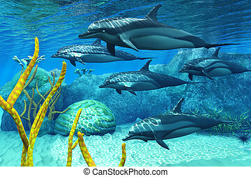 Striped Dolphins - A pod of Striped Dolphins swim along a...