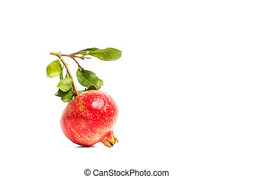 A pomegranate with branches and leaves on a white background