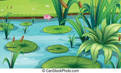 A pond with many plants - Illustration of a pond with many...