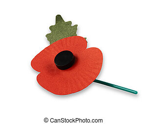 A Remembrance Day poppy