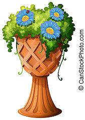 A pot with a plant