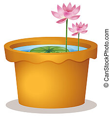 A pot with a waterlily and lotus flowers