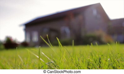 a Private Brown Wooden House. Shot Through Grass