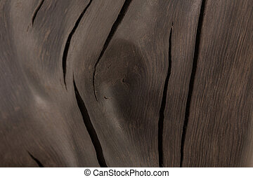 A product made from the roots of an old oak tree on a white background. Isolated Image