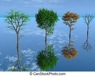 a, quatro, estação, árvores