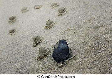 a question mark on a beach