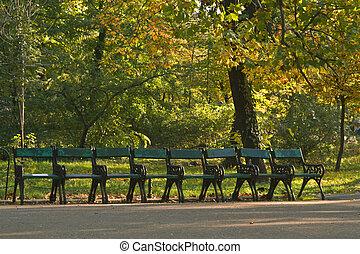 Row of specific benches in an autumn park. Location:Cismigiu Garden, Bucharest, Romania.
