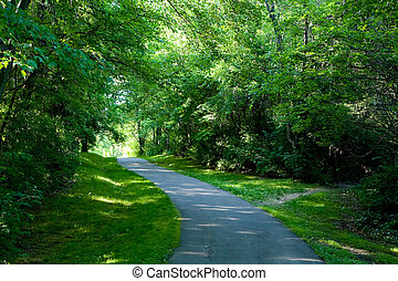 A quiet shaded running path