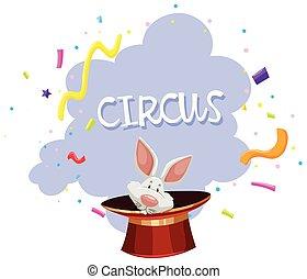 A Rabbit Magic Trick Circus