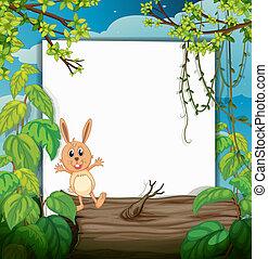 A rabbit on a trunk