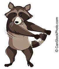 A raccoon doing floss dance