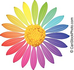 A rainbow colored flower on a white background