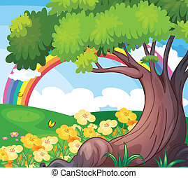 A rainbow in the sky and the beautiful flowers