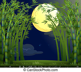 Illustration of a rainforest under the bright moon