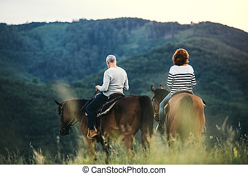 A rear view of senior couple riding horses in nature.
