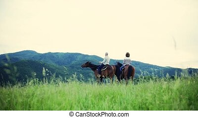 A rear view of senior couple sitting on horses on a meadow,...