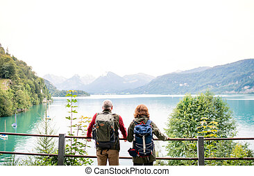 A rear view of senior pensioner couple standing by lake in nature. Copy space.