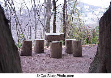 a recreation area for an environmentally friendly holiday. tables and chairs from natural stumps on a forest glade in autumn. a place for the rest and picnic