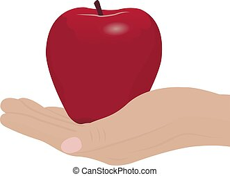 A red apple in a hand