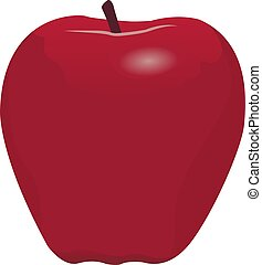 A red apple vector illustration