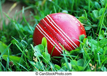 A red cricket ball